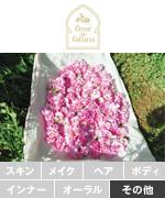 fleur_de_fatima